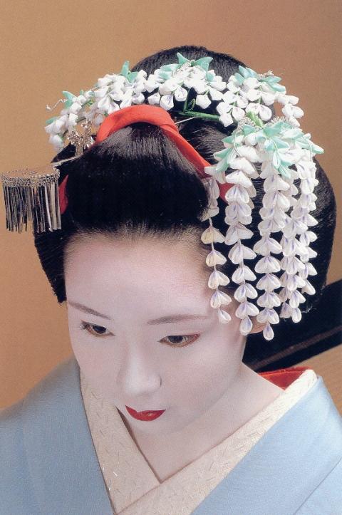 may-fuji_wisteria_1